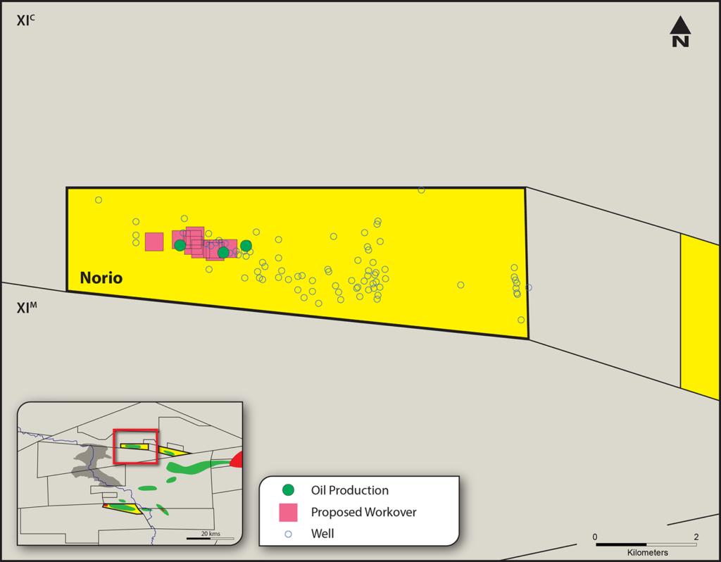 Norio field map